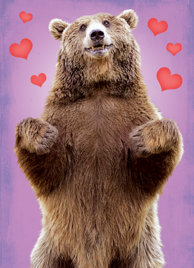 Bear Hug Val Funny Animals Ecard Cover