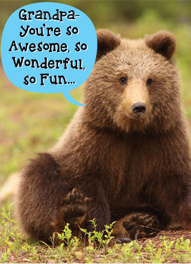 Bearly Funny Animals Ecard Cover