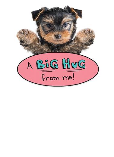Big Hug md Mother's Day Ecard Inside