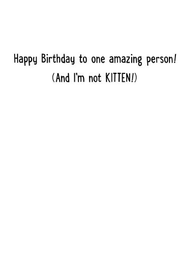 Cat Books Birthday Card Inside