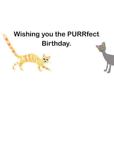 Cat People Birthday Card Inside