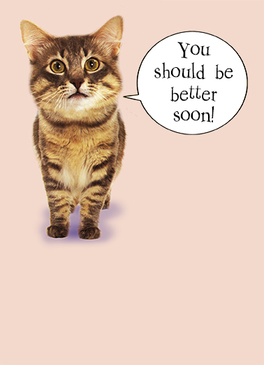 Cat Scan Get Well Get Well Card Cover