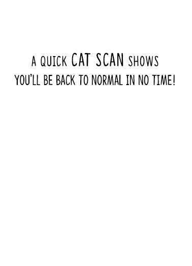 Cat Scan Get Well Get Well Card Inside