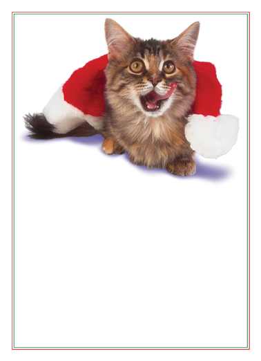Christmas Cat Legacy Card Cover
