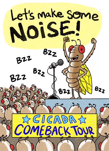 Cicada Tour Birthday Card Cover