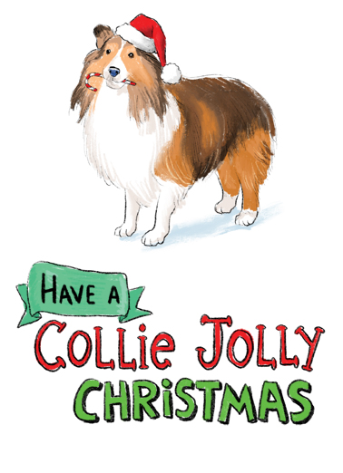 Collie Jolly Christmas Card Cover