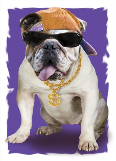 Dawg Halloween Ecard Cover