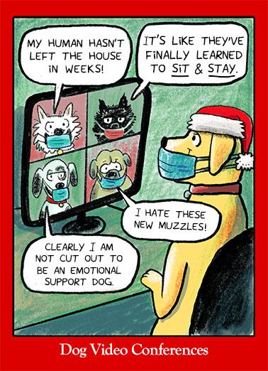 Doggone Christmas Christmas Card Cover