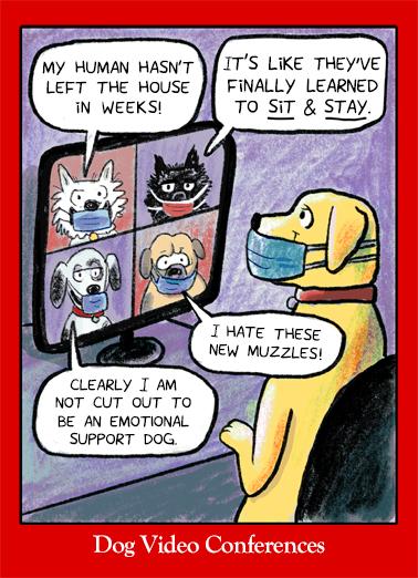 Doggone Valentine Valentine's Day Card Cover