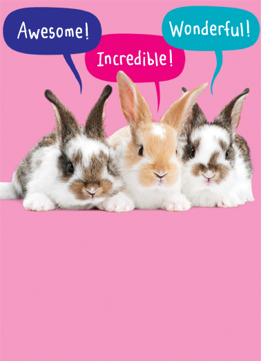 Every Bunny Easter Ecard Cover