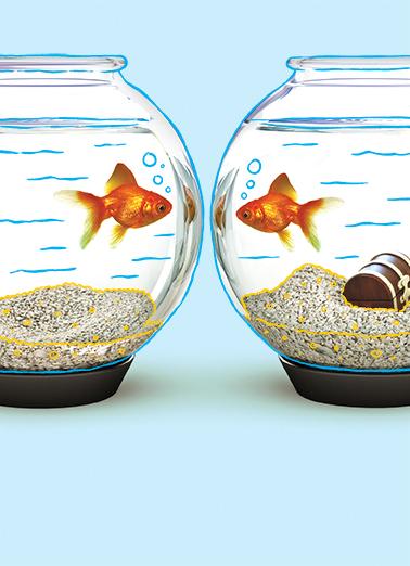 Fish  Ecard Cover