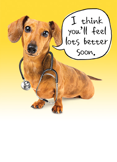 Get Well Dach Get Well Card Cover