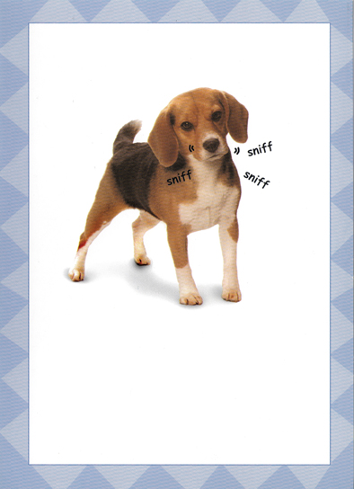 Latkes Dog Hanukkah Card Cover