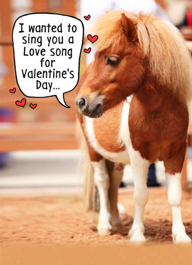 Little Horse VAL Valentine's Day Card Cover