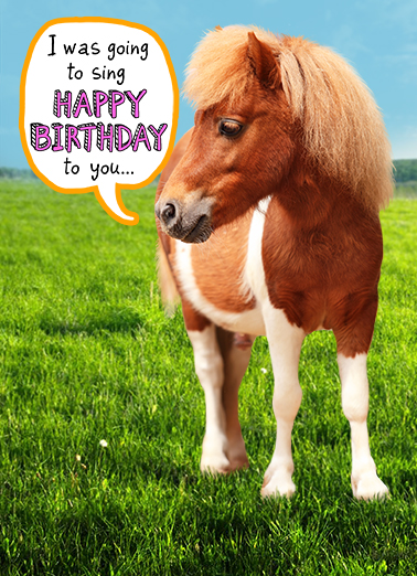 Little Horse bday Birthday Ecard Cover