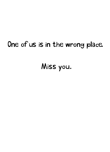 Miss You Cat Miss You Card Inside