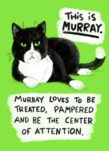 Murray Cat Birthday Card Cover
