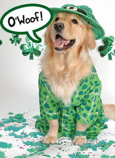 O'Bark St. Patrick's Day Ecard Cover