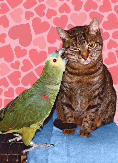 Peck (LV) Love Ecard Cover