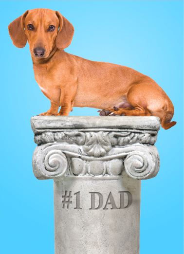Pedestal (FD) Funny Animals Card Cover
