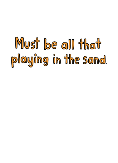 Playing in the Sand Birthday Card Inside