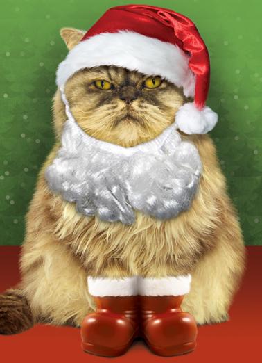 Santa Cat Christmas Card Cover