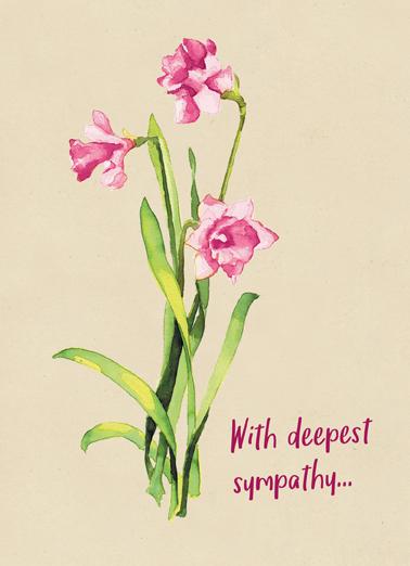 Sympathy Flowers Sympathy Card Cover