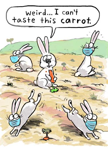 Taste Carrot Easter Card Cover
