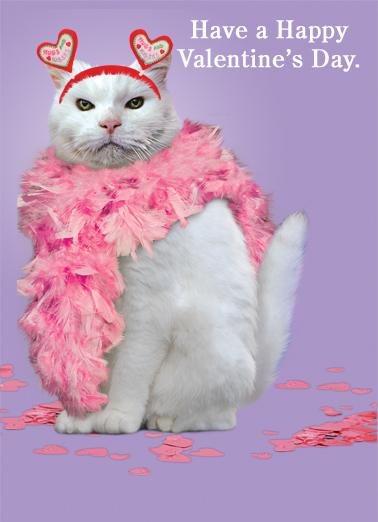 Valentine Cat Valentine's Day Card Cover