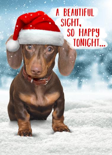 Weiner Wonderland Christmas Ecard Cover