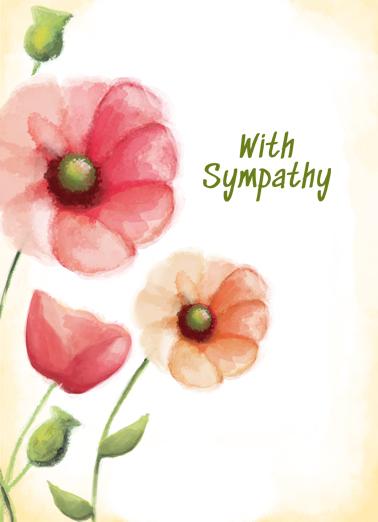 With Sympathy Sympathy Card Cover