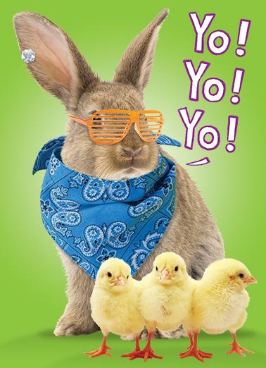 Yo Yo Bunny Easter Ecard Cover