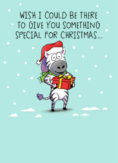 Zebra Christmas Stocking Hat Christmas Ecard Cover